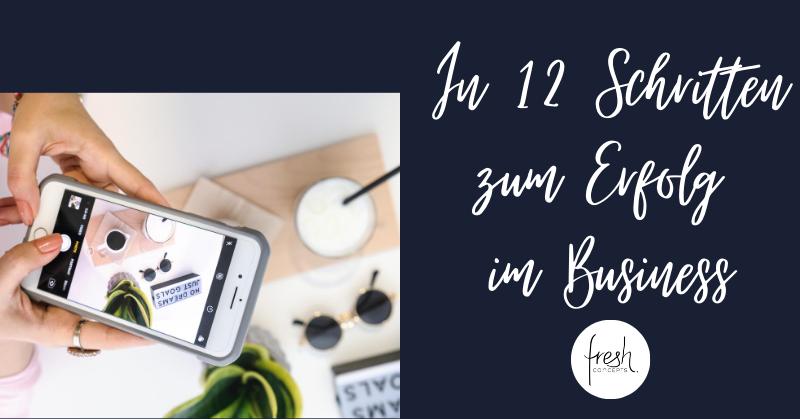 12 Schritte zum Erfolg im Business Download